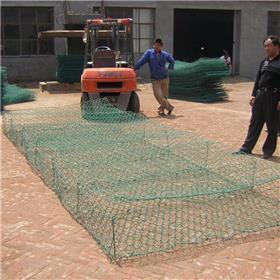 金海岸厂家销售 防洪铁丝网 挡土网 镀锌石笼网