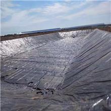 黑色塑料薄膜 养殖膜鱼塘专用膜 鱼池防水膜藕池防渗膜 土工膜