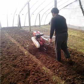 小型农用旋耕除草机 小型翻土机 多功能微耕旋耕除草机