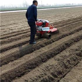 农用新型田园管理机 草莓开沟起垄机 手扶式葡萄埋藤培土机