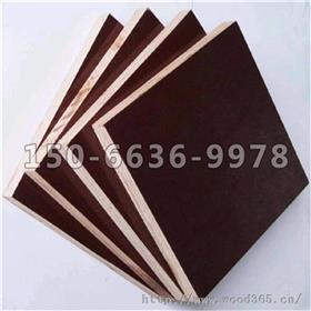 潍坊建筑模板_明源木业_潍坊建筑模板厂家_品牌商订购