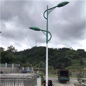 徐州 火树银花照明 厂家定制太阳能路灯户外灯新农村5米6米8米单头双头路灯大功率led