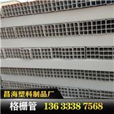 厂家供应PVC格栅管高品质九孔四孔格栅管规格齐全河北PVC格栅管