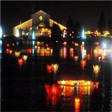 LED荷花造型灯 户外led发光荷花灯 祥家宜 河道亮化工程设计施工