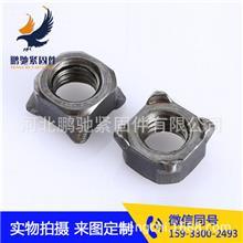 质优价廉 焊接螺母 盖型螺丝 紧固件、连接件 白锌螺母 实力厂家