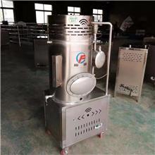 廠家直銷立式燃氣蒸汽發生器 商用蒸饃煮豆漿釀酒腐竹涼皮燃氣鍋爐蒸汽機