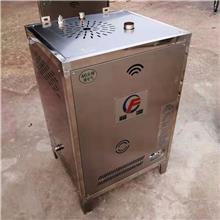 廠家供應壁掛式燃氣蒸汽發生器 家用節能蒸饃煮豆漿釀酒腐竹涼皮鹵肉燃氣鍋爐蒸汽機