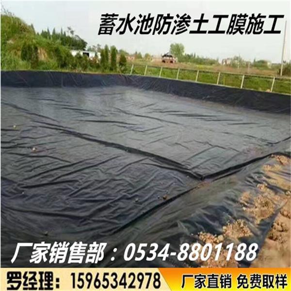 定制    HDPE土工膜防渗复合土工布膜蓄水池污水处理厂人工湖建通厂家直销