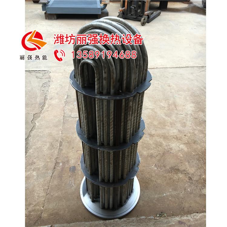 U型管式换热器_丽强_U型管式热交换器_加工商家