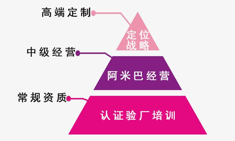 威格顾问金字塔.jpg
