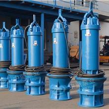 泵站改造大型潜水轴流泵