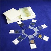 出售显微镜使用载玻片_大科教学_生物实验室载玻片_工厂制造
