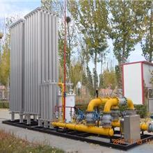 现货供应lng汽化设备 LNG气化器 LNG气化设备 燃气汽化器 气化站  河北端星