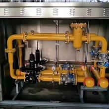 厂家直销各种规格燃气调压箱 燃气调压柜 燃气减压撬调压阀  河北端星