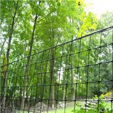夏天用窗纱pvc塑料窗纱 隐形窗纱网 防虫窗纱多种颜色