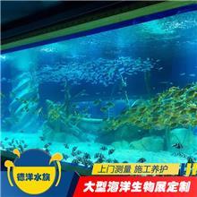 东莞出租各种彩色水母展_广州观赏海洋展租赁传媒公司_海洋藻类展览